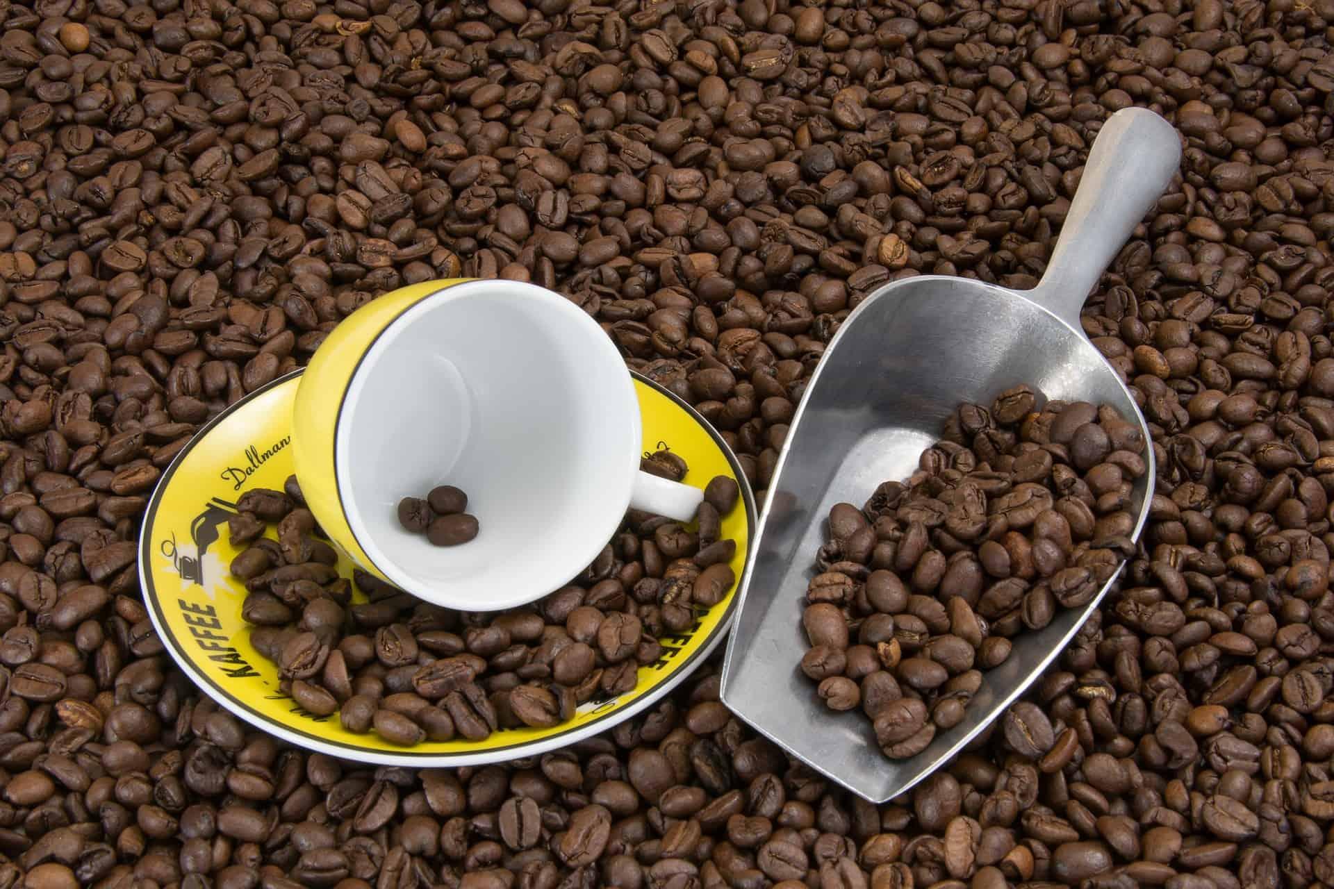 cucharada de café